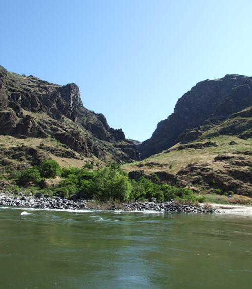 Fish Hells Canyon